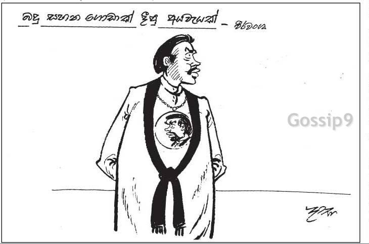 news paper cartoons 11 22 11 29 visit   gossip9